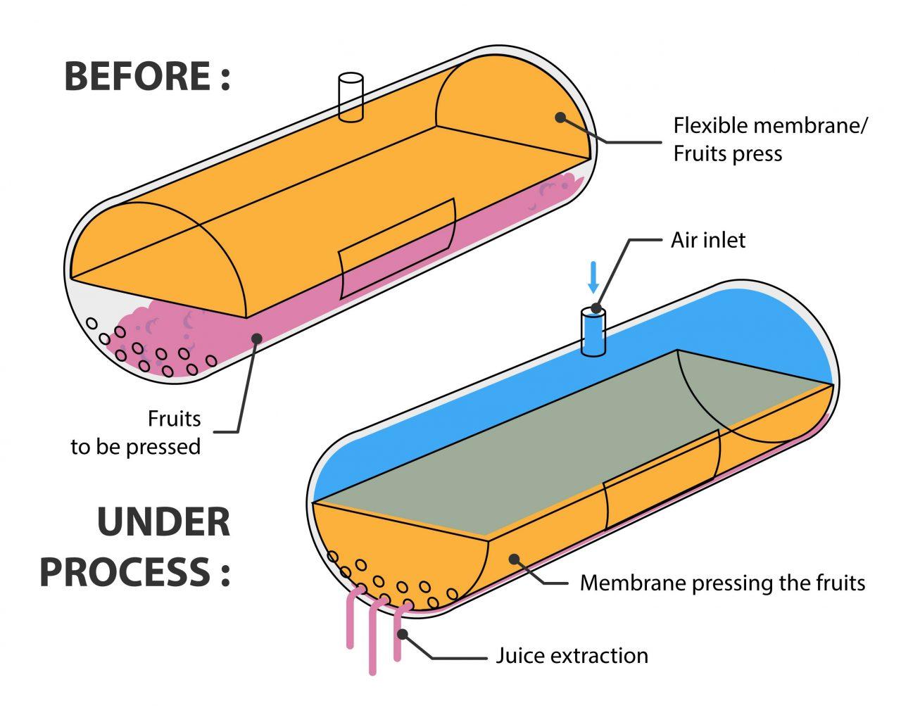 functional scheme about flexible membrane use